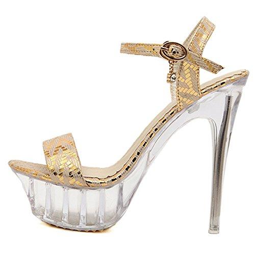 Oasap Women's Open Toe Platform Slingback High Stiletto Sandals silver
