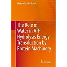 The Role of Water in ATP Hydrolysis Energy Transduction by Protein Machinery