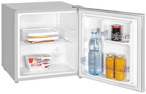 Mini Kühlschrank Kühlbox Minibar Vollraum EEK A++ 45l Grau