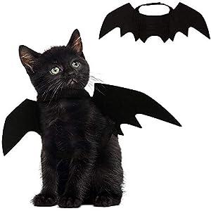 Leegoal Ailes de chauve-souris pour animaux domestiques, Déguisement d'Halloween pour chiens, chats