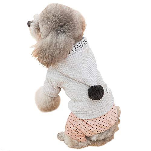Kostüm Buchstabe H - Motto.h Strickbekleidung für Hunde, Kapuzenpullover für Haustiere, vierbeinige Pfoten, gestreift und Bedruckt mit Buchstaben, mit Mantel aus Baumwolle, Kugel für Hunde