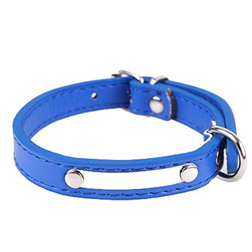Nikgic 2,5 * 58 cm Blau L-Code Einstellbar Einfache Haustier Kragen Hohe Qualität PU Leder Kragen Mode Haustier Kragen
