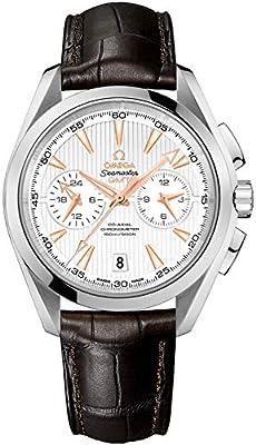Omega Seamaster Aqua Terra Steel Men's Watch w/Brown Crocodile Leather Strap 231.13.43.52.02.001