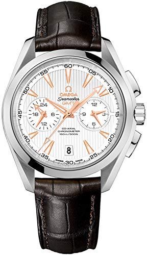 Omega Seamaster Aqua Terra Steel Men's Watch w/ Brown Crocodile Leather Strap 231.13.43.52.02.001