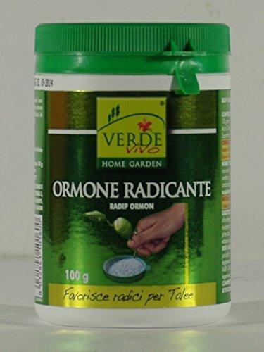 verde-vivo-verdevivo-radip-ormon-cuidado-de-las-plantas
