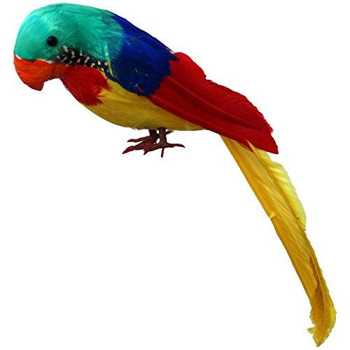 Papagei mit bunten echten Federn 30 cm Dekoration Südsee Seeräuber Pirat - Südsee Piraten Kostüm
