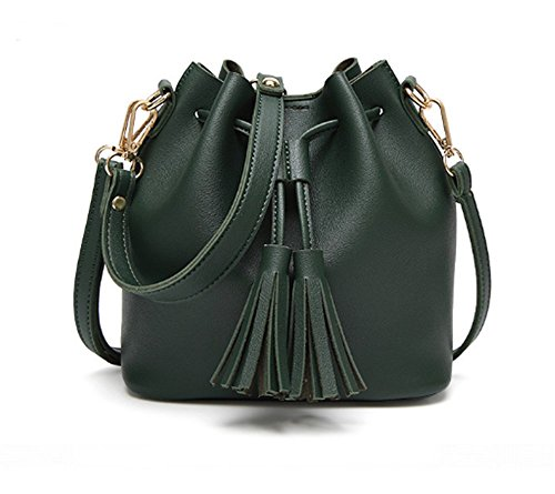 Swallow Borsa piccola della nappa delle donne, borsa del messaggero portatile casuale portatile Verde