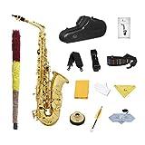 perfk Ensemble Sassofono Professionel + BOCCHINO + cuscinetto + Borsa protegge Durable, Coquille Doré