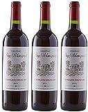 Château Puy Blanquet Bordeaux Saint-Emilion Grand Cru Vin Rouge 2014 - lot de 3x75cl