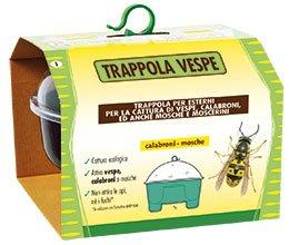 trappola-vespe-e-calabroni