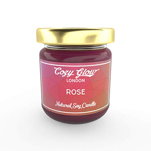 Acogedor resplandor rosa 6,5oz-vela de soja con aroma