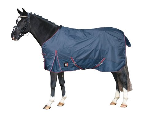 PFIFF 100263 Pferde Outdoor Decke, Regendecke Pferdedecke Weidedecke, Blau 125cm
