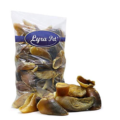 Lyra Pet® 100 Stück Rinderhufe Kalbshufe Rindshufe Hufe ungefüllt Hundefutter