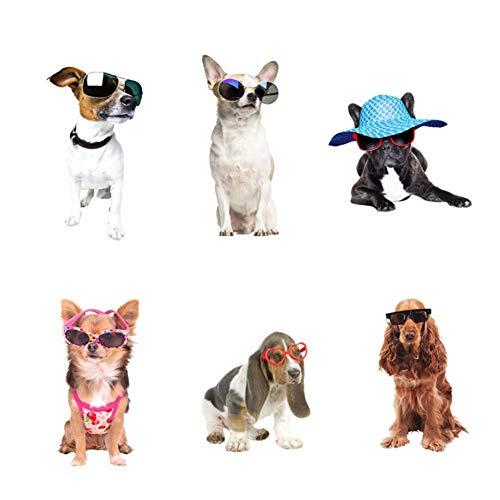 ZHOUZXY Adhesivos De Pared 3D Divertidos Y Lindos para Perros Y Gatos para Sala De Estar, Papel Tapiz De PVC, Decoraciones De Pared para Niños Y Niñas