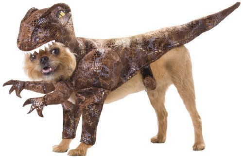 Pet Kostüm Raptor - Animal Planet PET20109 Raptor Dog Costume, Size Medium by California Costume Collections