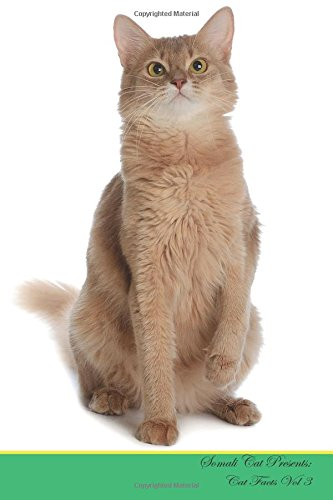 Somali-katze (Somali Cat Presents:  Cat Facts Workbook. Somali Cat Presents Cat Facts Workbook with Self Therapy, Journalling, Productivity Tracker with Self ... Productivity Tracker Workbook. Volume 3)