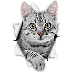 Winston & Bear Gato 3D pegatinas gato Tabby gris - Pack 2 - pegatinas para pared, pegatinas de nevera gato Tabby gris