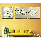 Alcoa Prime 3-panel Canvas Wall Artwork Painting Set White Orchid Living Room Decor 30cm