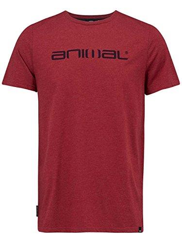 Animal Herren, T-Shirt, Marrly rio red marl