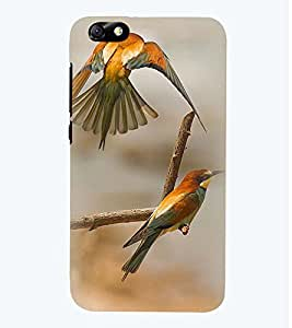 Printvisa Premium Back Cover Pair Of Love Birds Design For Huawei Honor 4X::Huawei Glory Play 4X