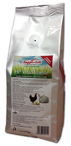 RAGGIO DI SOLE HP VitaMineral plus mangime vitamine minerali per avicoli e conigli 1 kg