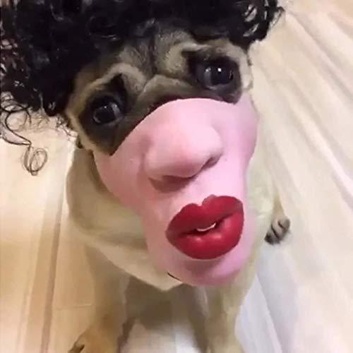 WANG XIN Haustier Hund Maske Super Spaß große Lippen Kopfbedeckungen Haustier Maske Unterhaltung Parodien lustige Cosplay Maske (Herzen rosa) (Color : Pink) (Eishockey Hunde Kostüm)