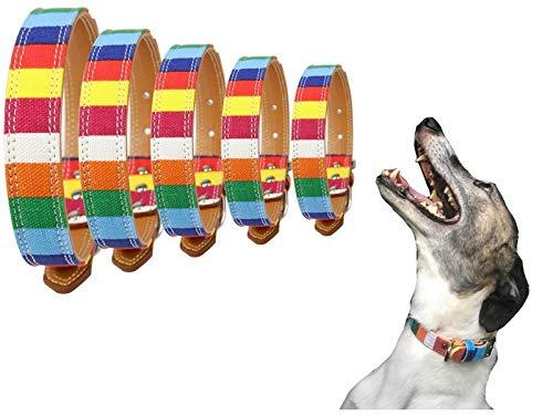Lushpetz - Collar de lona para perro con diseño de arcoíris