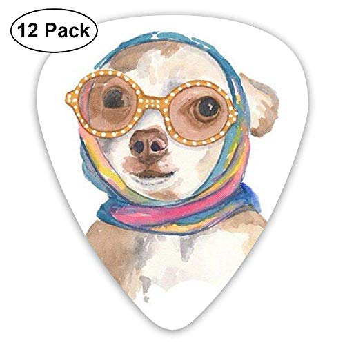 Novelty Rainbow Painting Bright Color Novelty Oil Painting Wear Glasses Dog Guitar Picks - 12 pack -