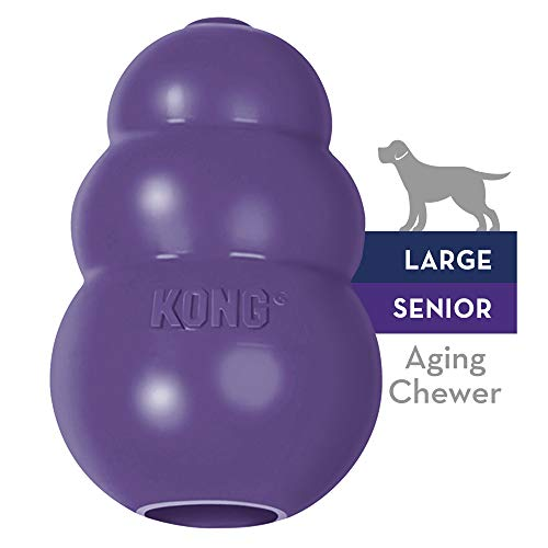 Kong JU03137 Senior Morado Grande