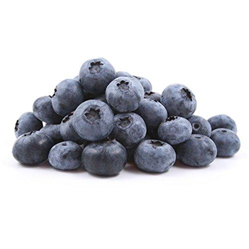 KAYI Blueberry Seeds Plant Home Jardin Plantation Intérieur Extérieur Fruits Vegatable Graines 100 Pcs / sac