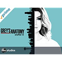 Grey's Anatomy - Staffel 13 [dt./OV]