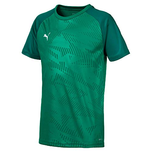 Puma Kinder Cup Jersey Core Trainingsshirt, Pepper Alpine Green, 140 -