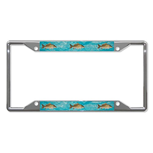 Metall-Kennzeichenhalter für Karpfenfischen, 4 Löcher, perfekt für Männer und Frauen, Auto-Garadge Dekoration -