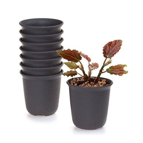 T4U 12CM Plastik Runde Blumenkübel Sukkulenten Töpfe Kaktus Pflanze Töpfe Blumentöpfe Für Haus oder Garten Dekoration Braun 8er Set