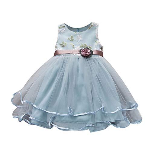 erthome Baby Outfits, Mode Mädchen Sommer ärmellose Bestickte Spitze Prinzessin Kleid (6-12 Monate, Hellblau)