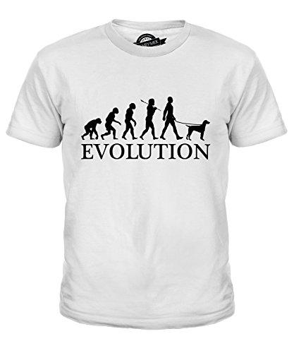 CandyMix Epagneul Breton Evolution Des Menschen Und Hund Unisex Jungen Mädchen T Shirt, Größe 12 Jahre, Farbe Weiß (Brittany Spaniel-weiß T-shirt)