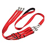 Zerol Haustier Kragen Einstellbare Halsbänder Outdoor Training Geschirre Mode Cute Hundegeschirr