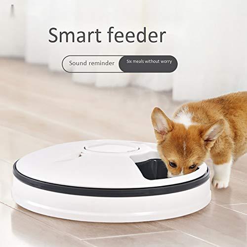 DOOK Futterautomat: Zeitgesteuerter 6-Fach-Katzen- & Hunde-Futterspender, LCD-Display (Katzenfutterautomat)