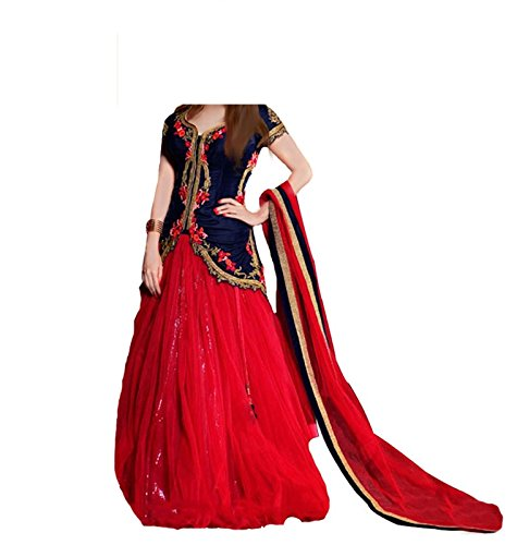 S R Fashion Girl's Net Salwar Suit Set (SRF_DMK_9007, Red, 8 to...