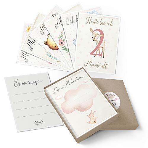 40+1 Baby Meilensteinkarten schöne Geschenkidee zur Baby Geburt, Schwangerschaft, Taufe oder Babyparty Milestone inkl. Geschenkbox - Mädchen