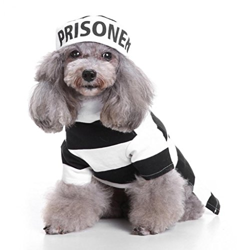 Fashion Funny Gefängnis gestreift Halloween Party Pet Hund Kostüm Kleidung Cosplay mit Hut
