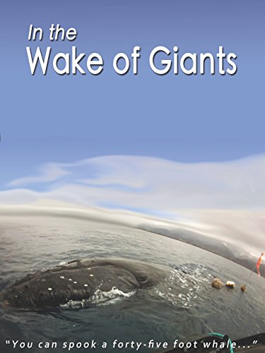 In the Wake of Giants
