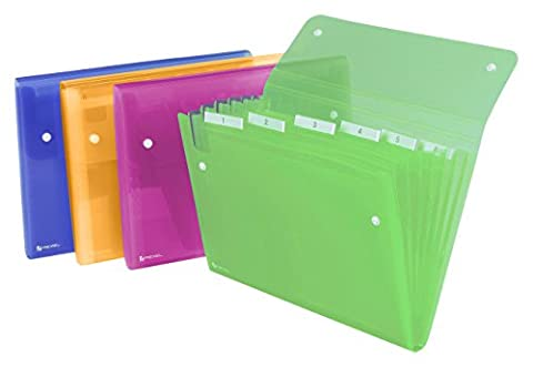 Rexel Ice Expanding File Assorted Colours ( 6 Pockets, 120