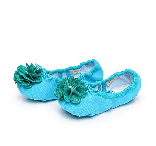 Zapatos Blandos de Baile basicos Zapato de Baile Profesional Ballet Zapato Pink Polet Shoes de Muchos Colores Zapatillas de Baile para Damas Chicas Chicas (Color : Azul, tamaño : 39 1/3 EU)