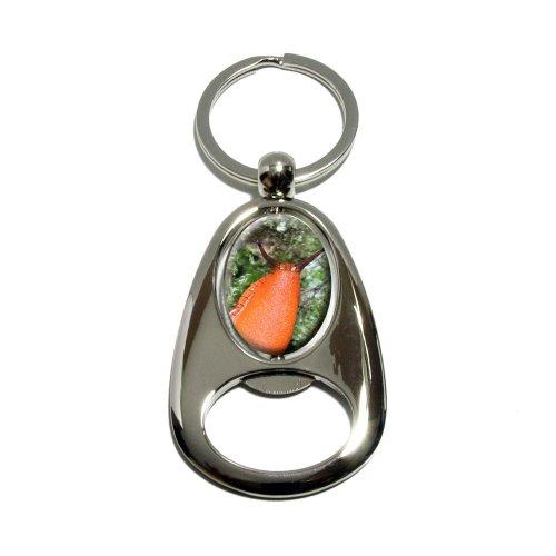 grand-orange-limace-escargot-mollusk-tourne-en-mtal-plaqu-chrome-ovale-conception-dcapsuleur-porte-c