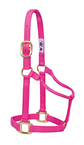 Weaver Leder Original Festeingesteller Weanling/Pony Halfter, Diva Pink, Small Horse