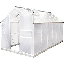 Gewächshaus Aluminium 7,8m³ - 19m³ mit Fundament - Frühbeet Pflanzenhaus Tomatenhaus verschiedene Größen (11,6 m³)