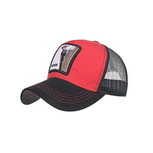 768261ad8c02f1 Fannyfuny Unisex Premium Baseball Kappe Mesh Atmungsaktiv Quick Dry Sport  Sonnenblende Cap Basecap Casual Outdoor UV