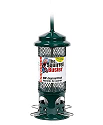 Squirrel Proof Bird Feeder - Squirrel Buster - Marauders off! Guaranteed Squirrel and Large Bird Proof / Metal