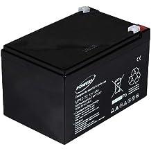 Powery Batería de GEL para Peg Perego SAI 12V 12Ah (sustituye a ...